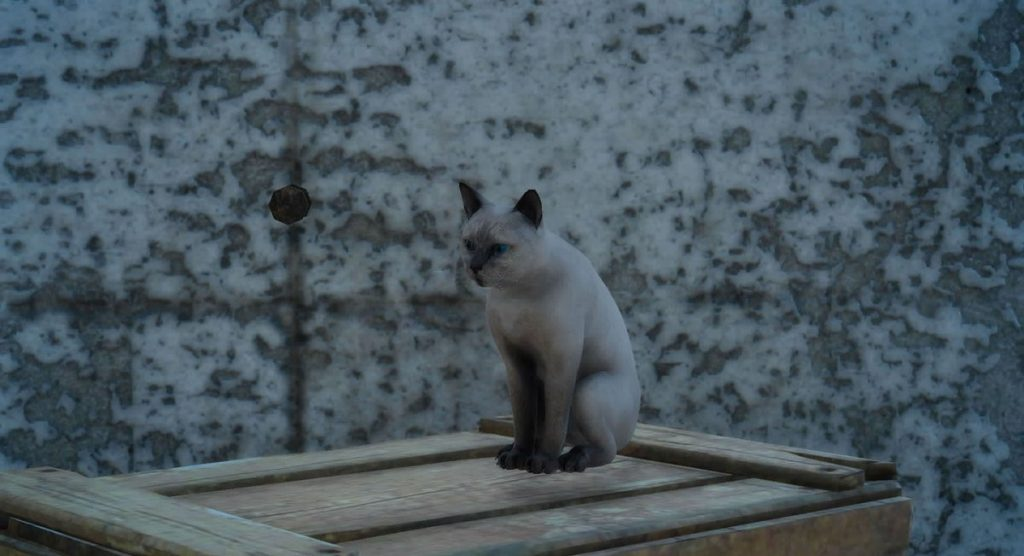 FF15の愛嬌のある猫から受注可能なサブクエスト『腹ぺこ猫のご飯』のイメージ画像です。