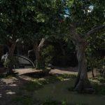 サブクエスト『探索 メルロの森』攻略【FF15】